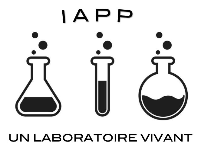 La formation IAPP, un laboratoire vivant sur l'analyse des pratiques professionnelles.